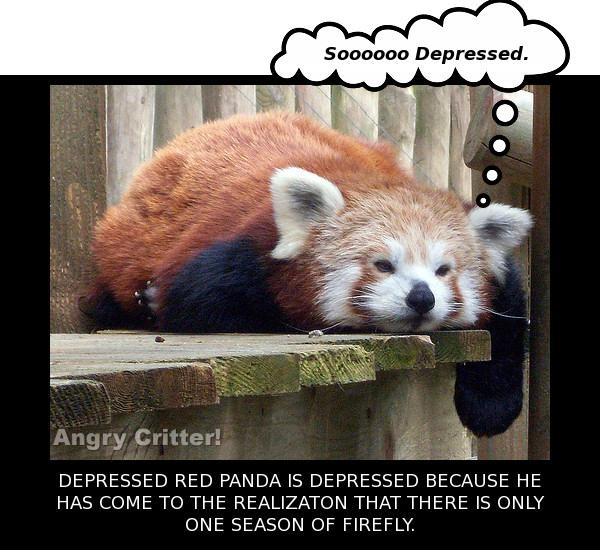 firefly panda