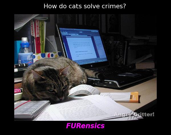 FURensics