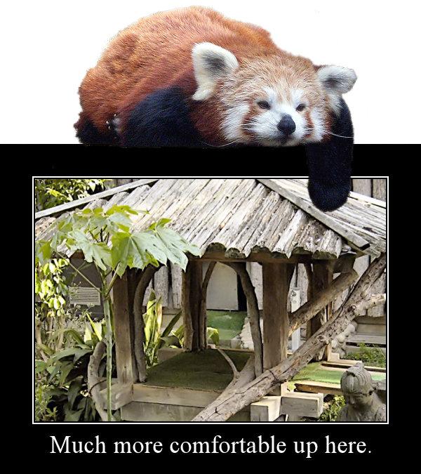Lazy Firefox