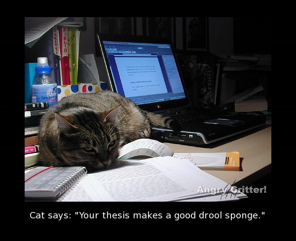 cat study drool