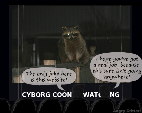 Cybercoon is boring-coon