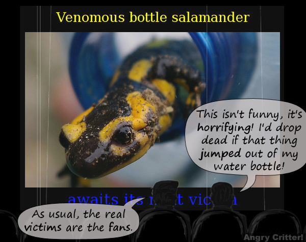 Venomous Bottle Salamander