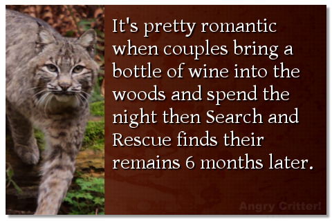 It's pretty romantic when couples bring a bottle of wine into the woods and spend the night then search and rescue finds their remains 6 months later.